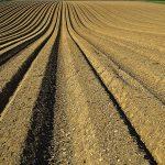 Te explicamos el nuevo reglamento europeo sobre fertilizantes