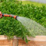 ¿Cuál es el gasto de agua en un jardín común?