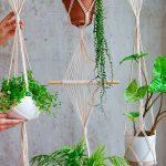 Tendencia de plantas de primavera 2021