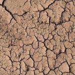 El Día Mundial contra la Desertificación y la Sequía